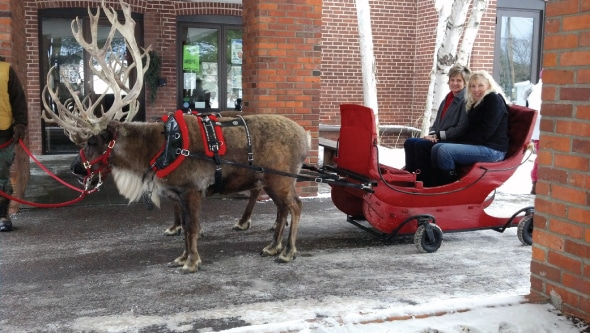 things to do in Minneapolis in winter